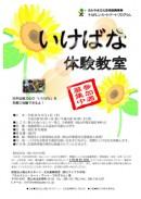 ikebana_eye