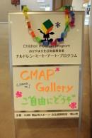 cmap_s